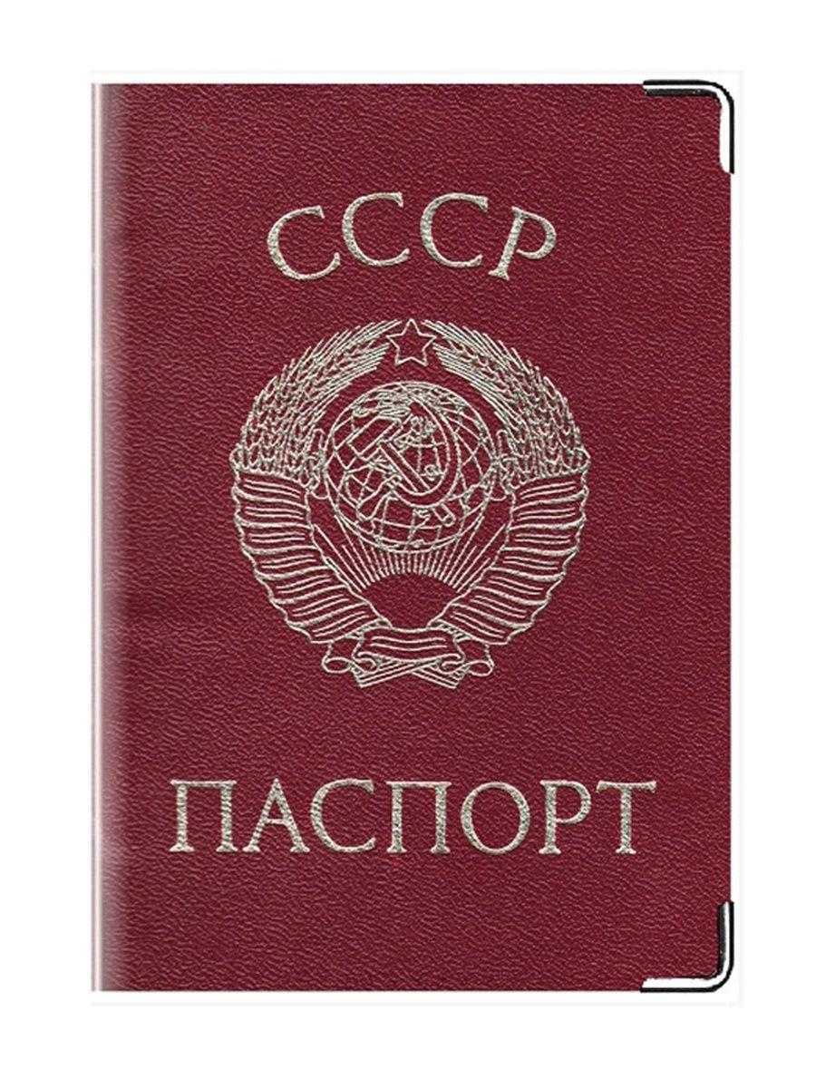 введение паспортной системы год