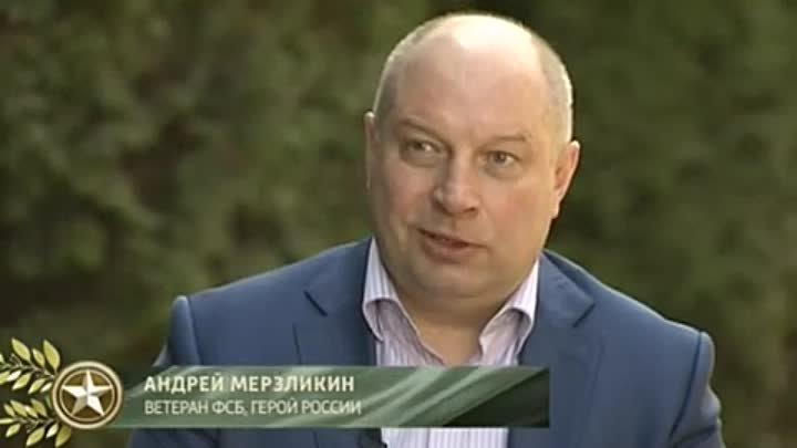 андрей мерзликин герой россии википедия