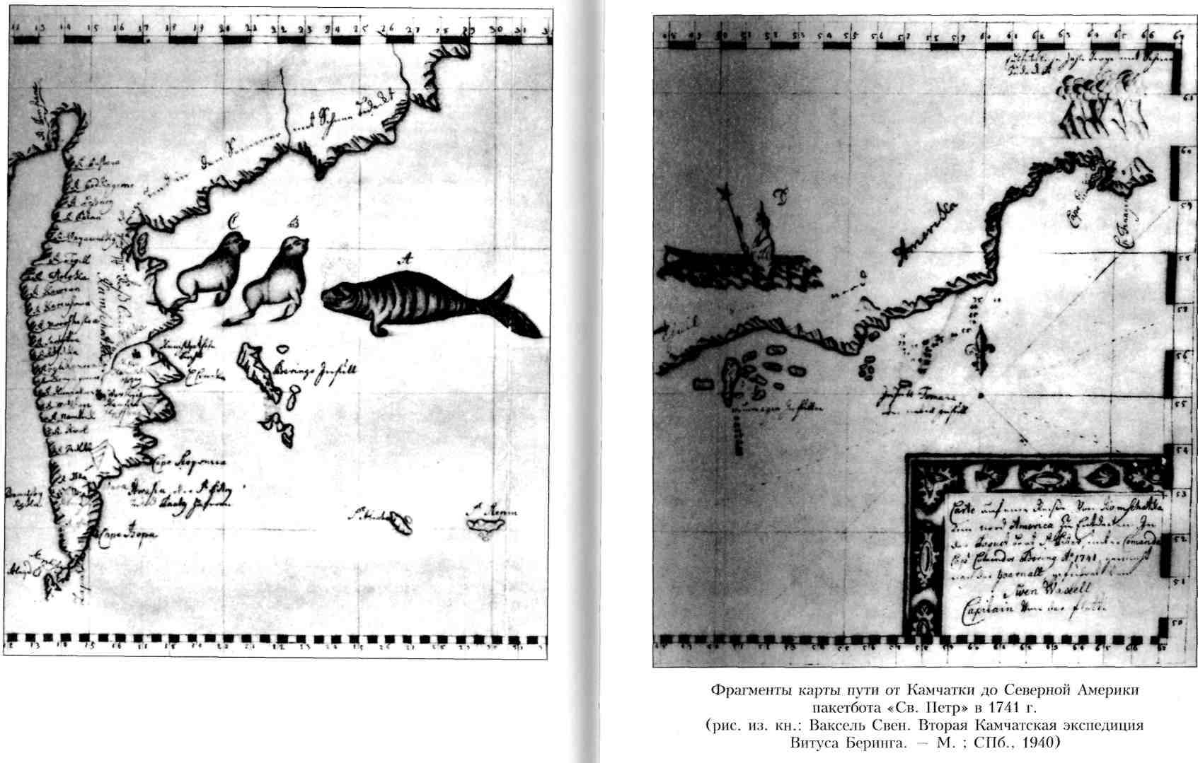 первая камчатская экспедиция витуса беринга была организована