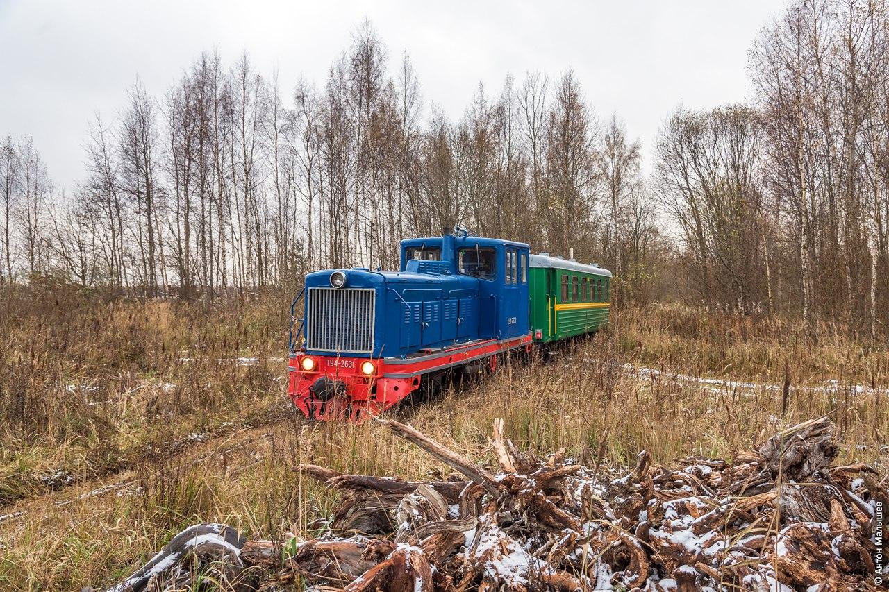 размер колеи железной дороги