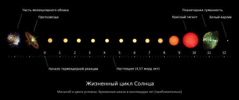жизненный цикл звезды
