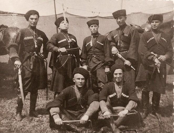 дикая дивизия википедия