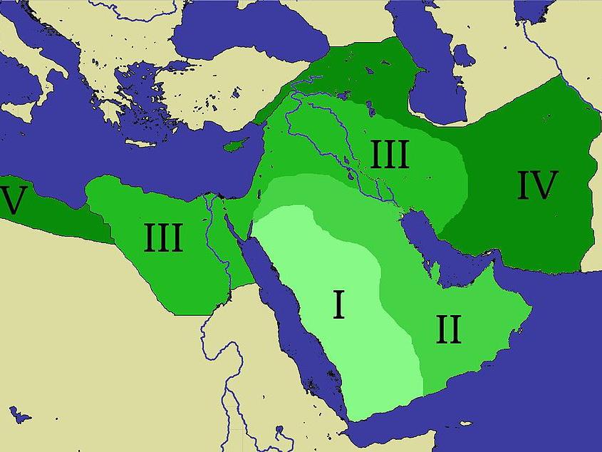 что значит халиф