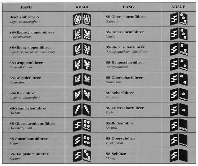 звания и знаки различия в сс