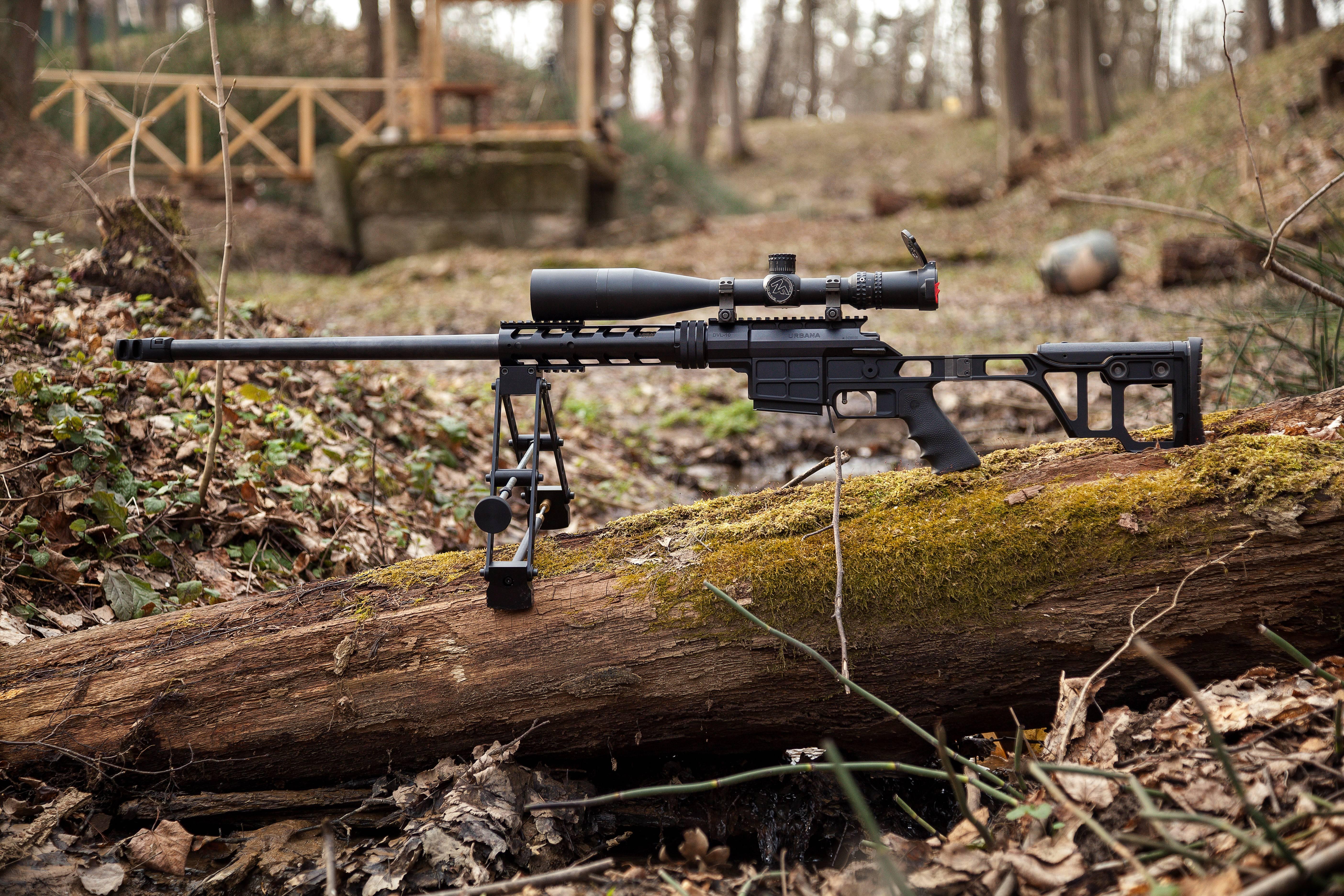 снайперская винтовка двл 10