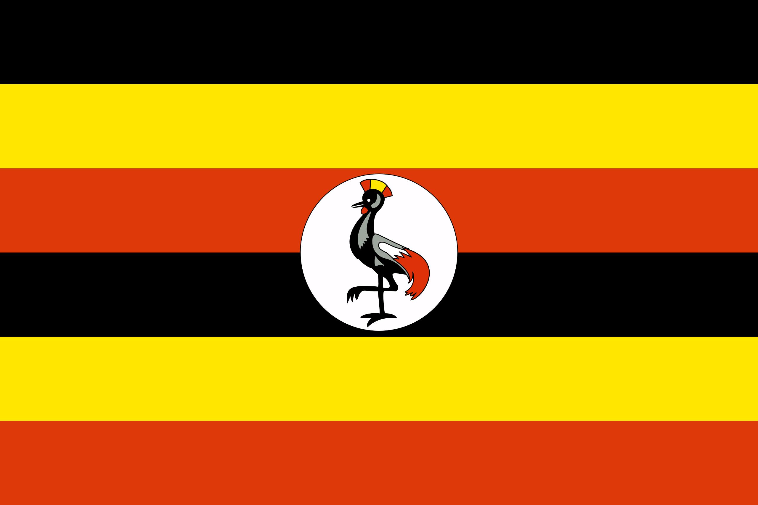 флаг синий черный белый какая страна