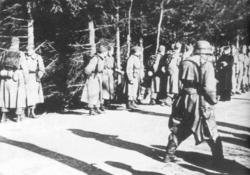дания во время второй мировой войны