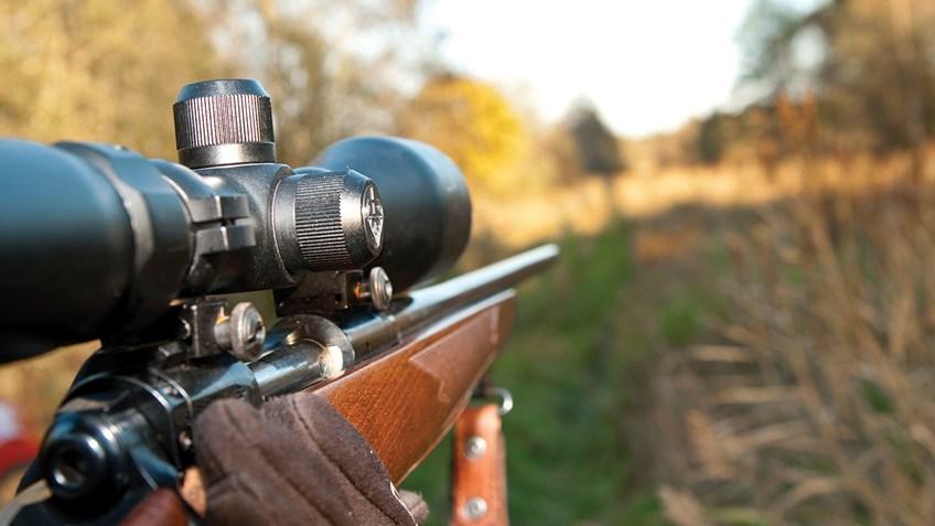 охотничий карабин фото