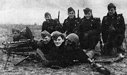 дания во второй мировой войне википедия