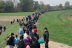 миграция в восточной европе