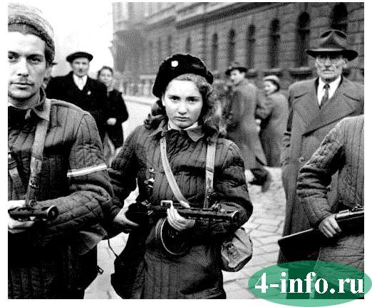 венгерские события 1956 года кратко