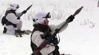 русские снайперские винтовки