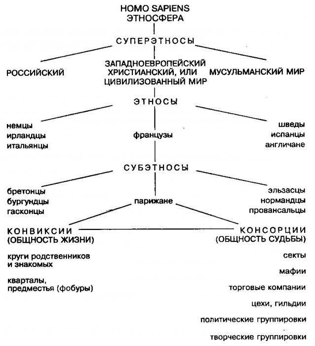 теория этногенеза л н гумилева