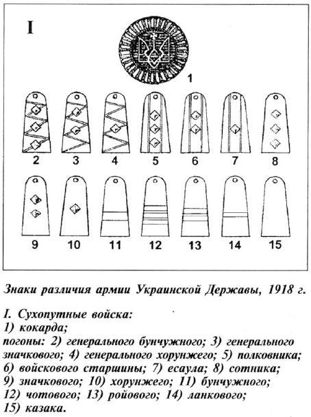 звания в украинской армии
