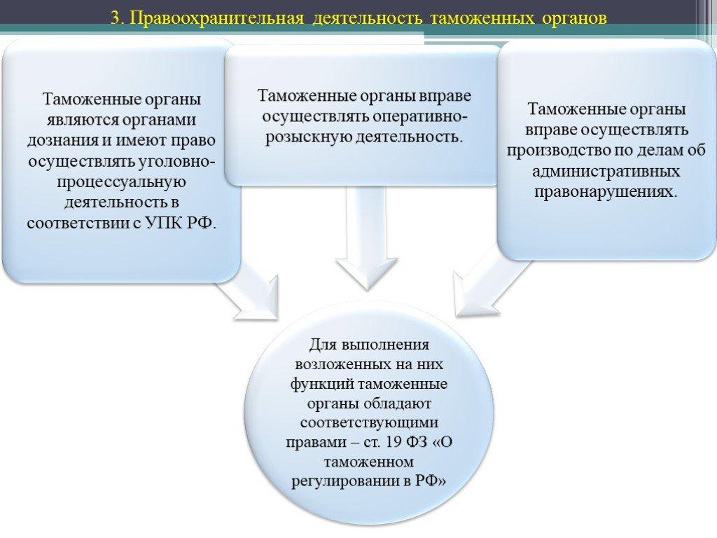 структура таможни
