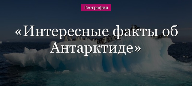 почему арктика не материк
