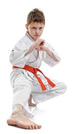 боевых искусств