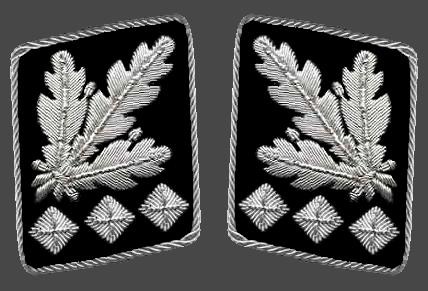 знаки различия войск сс
