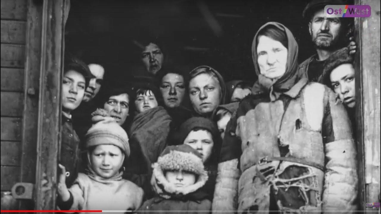 российские немцы