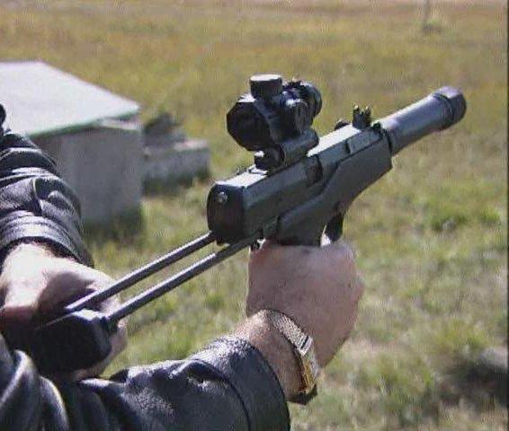пистолет каштан