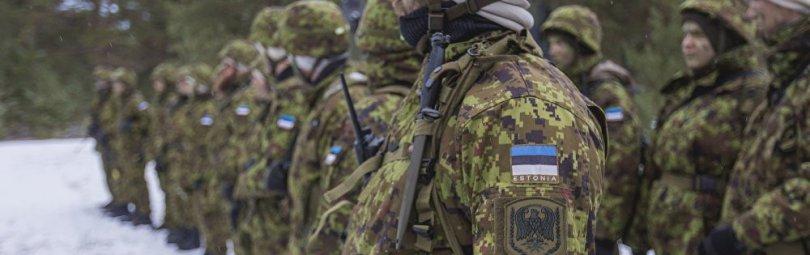 Эстонская армия