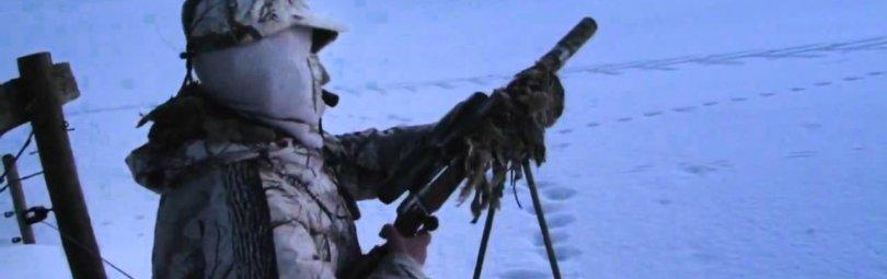 «Охота на лису с манком Mini Predator» смотреть видео онлайн